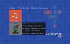 FK30lyers-TConcert